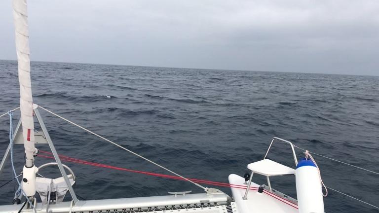 OCEAN SCREEN 1